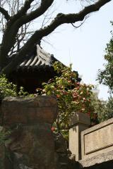 Shanghai Yuyuan Garten 1