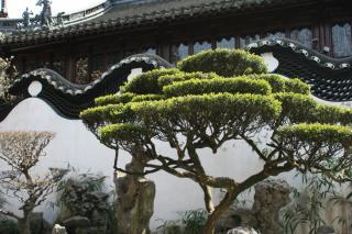 Shanghai Yuyuan Garten 2
